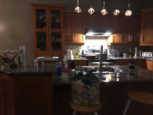 Gorgeous rooms for rent in the heart of college park