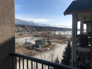 Fully furnished 2-bed, 2-bath available March 1st, 2019