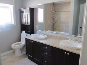 General Contractor - DR Renovation Solutions Cambridge Kitchener Area image 4