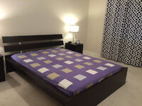 Used Queen Size Bed Frame with Free Mattress for $150