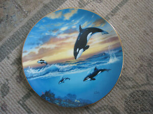 Collector Plate – Killer Whales