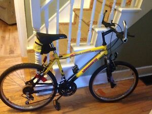 """24"""" Mountain bike. Great condition."""