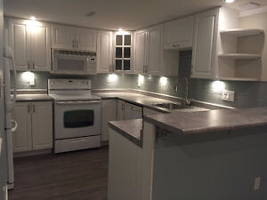 Newly Renovated Basement Suite For Rent