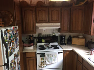 Kitchen cupboards along with appliances