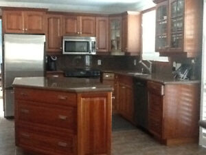 Kitchen cabinets w/ granite counter