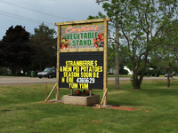 Now Hiring Strawberry Pickers for 2017 Season