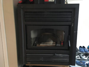 Fireplace/woodstove