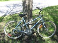 """BICYCLE WITH 19"""" INCH FRAME"""