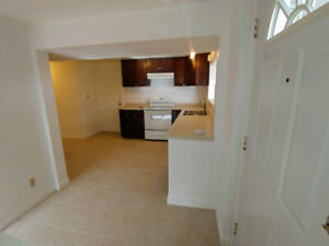Renovated, Bright, Spacious, Basement Suite