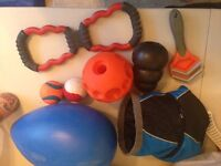 Dog accessories, toys, collars, leash, harness