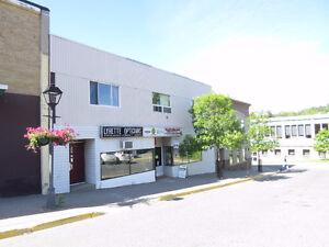 6 Elizabeth Walk, Elliot Lake - Commercial Real Estate