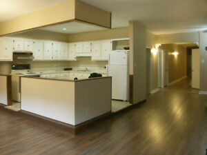 5 Bdrm Student Rental in the Heart of Downtown Hamilton