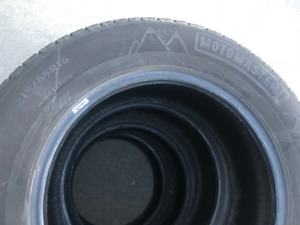 MotoMaster Winter Edge Tire Set of 4