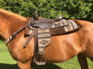 Saddle | Equestrian & Livestock Accessories in London | Kijiji