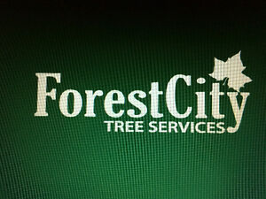 Forest City Tree Services - 20% off Spring Sale