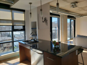 Summer Sublet: High End, 2 bedroom in South End