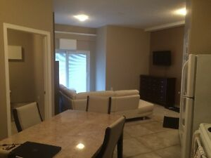 Fully Furnished Executive 1 bedroom Suites for rent