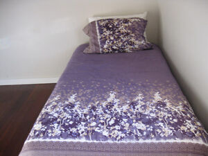 Beautiful Single Bed Comforter, bedskirt, and Sham