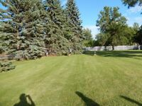 1/2 acre treed building lot in East St.Paul