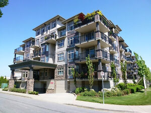 Adult oriented condo with amazing views in newer building #304