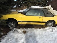 1983. Classic mustang convertible   Only $500.00