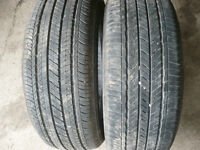 Two- 205-55-16 tires   $70.00