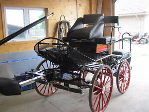 Carriage buggy