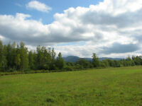 100 acres with Woods, Fields, Streams & Views in Townships