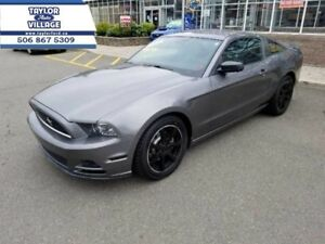 2014 Ford Mustang V6  - $149.24 B/W - Low Mileage