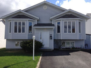 Beautiful 2 bedroom East end apartment for rent December 1.