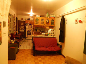 2 Bedrooms Available for Sublet in Great Plateau Apt from May 1!