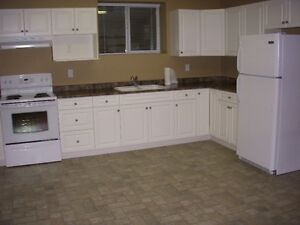 Willoughby/Walnut Grove Basement Suite