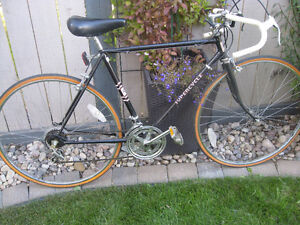 Supercycle 10 speed road bike