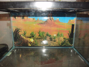 10 gallon tank with screen lid