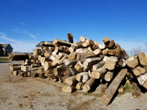 Looking to buy Standing Timber! Log your bush! Make cash!! $$$$