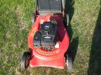 Lawnmower, Champion 20 in. for sale