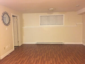 One bedroom apartment in paradise St. John's Newfoundland image 8