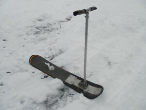 Custom Snow board