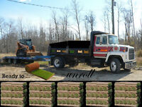 Need Grass  Sod or Slit seed, top soil Residential, Commercial
