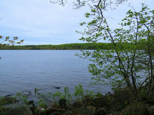 Now's The Time for a Lakefront Cottage Lot on Sherbrooke Lake