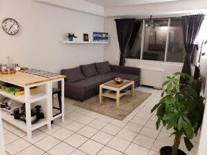 Fully furnished 3 1/2 very close to McGill winter term sublease