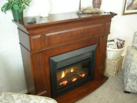 Dimplex Electric Fireplace with Thermostat and Remote Control