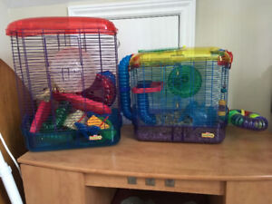 2 Cages and All Accessories plus Daisy the Hamster!