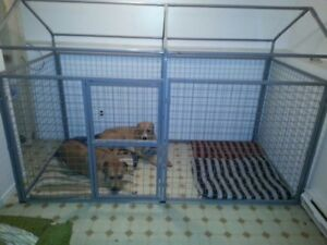 Very Large Indoor/Outdoor dog kennel.