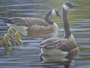 """Robert Bateman Signed A/P """"Canada Geese with Young""""- Print Kitchener / Waterloo Kitchener Area image 5"""