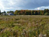 150 acres Organic Land near Montague