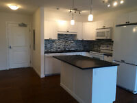 New Price! 1Bed /1Bath Condo Downtown WH w large balcony