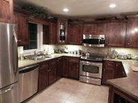 Birch Kitchen cabinet doors and drawer panels
