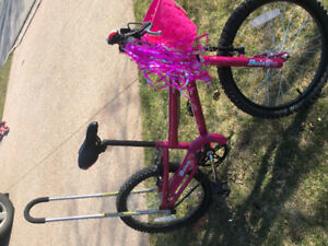 "Girls Norco 20"" bike"