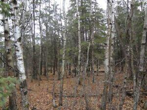 90' x 170' Treed Lot North of Gimli Close to Water (Glen Bay)
